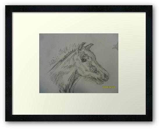 Froliking foal by lynnieB