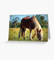 Hitch-hiker Greeting Card