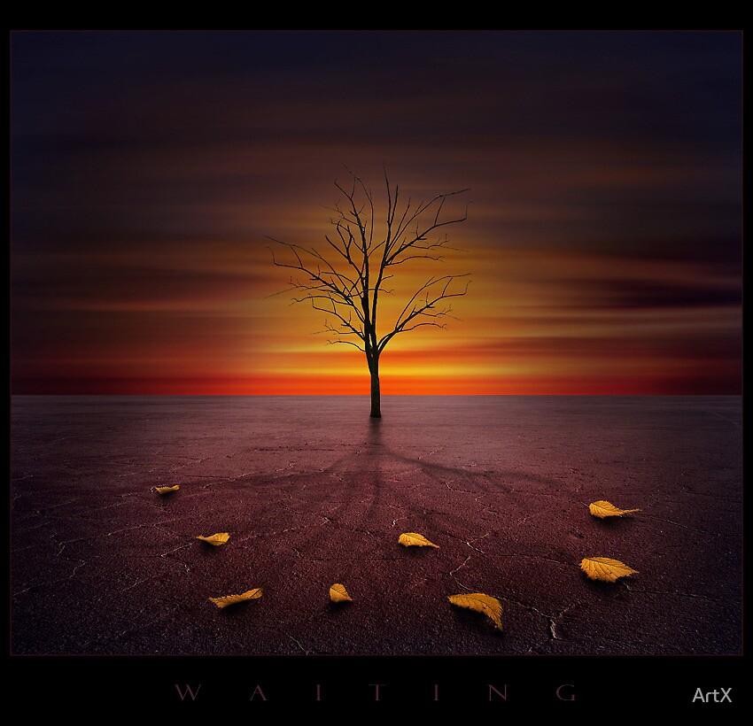 W  A  I  T  I  N  G by ArtX