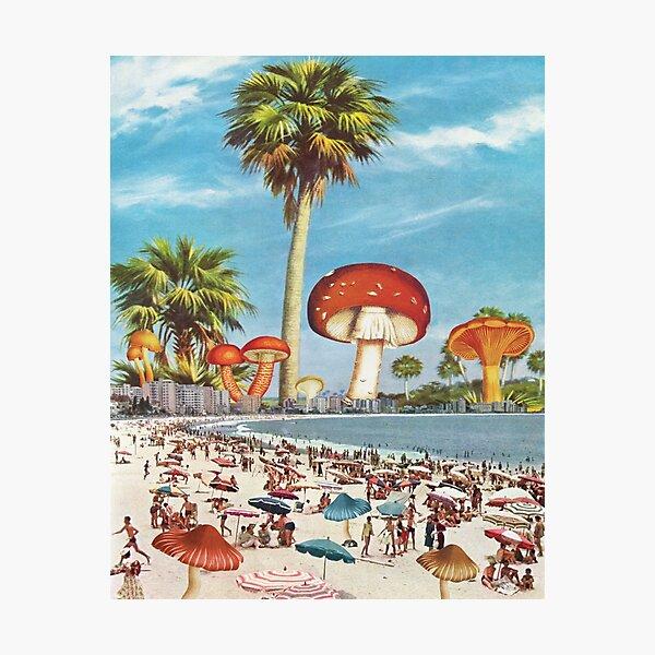 Summer Shade Photographic Print