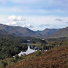Glen Affric by TomRaven