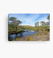 Flowing Away Canvas Print