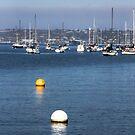 Buoys On the Bay by Heather Friedman