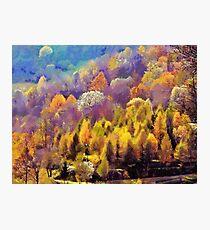 autumn colors Photographic Print