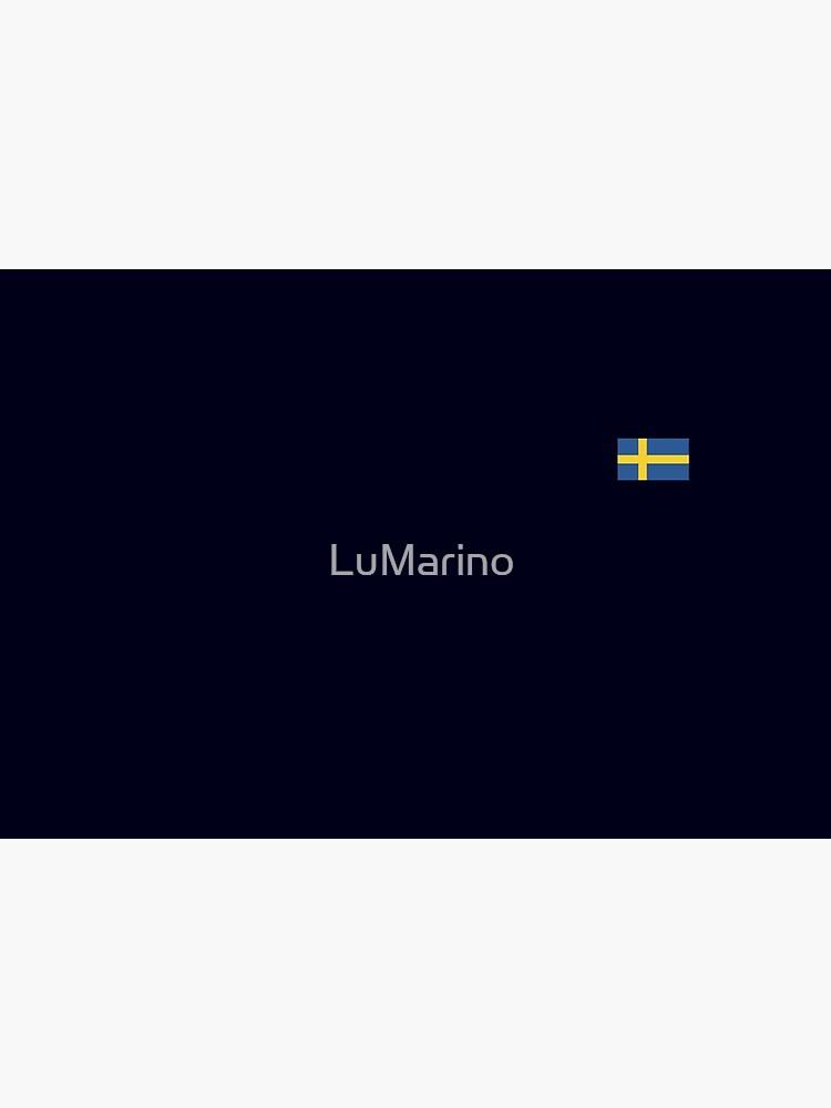 Sweden flag by LuMarino