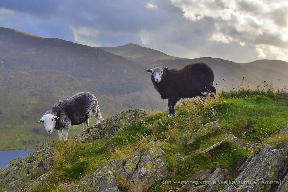 The Lake District: Life on the Edge by Rob Parsons
