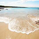 Hawaiian Delight by Ticker