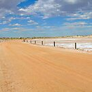 Journey to Lake Eyre 01 by Helen Eaton