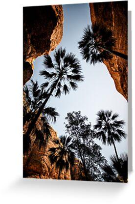 Australia - Outback Gorge II by lesslinear