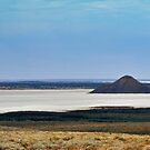 Journey to Lake Eyre #06 by Helen Eaton