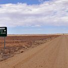 Journey to Lake Eyre #07 by Helen Eaton