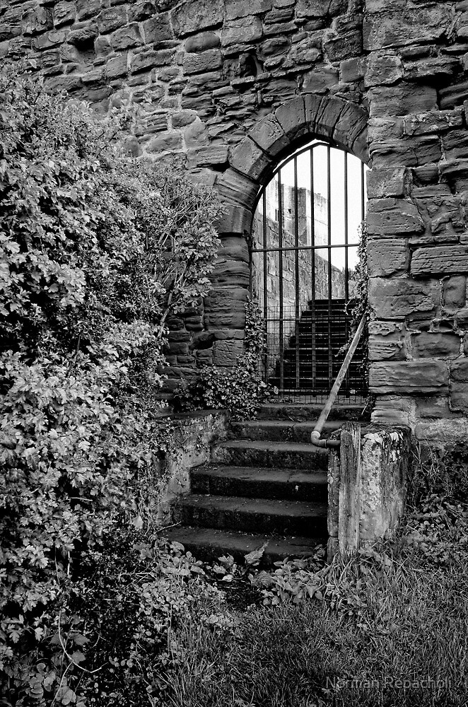 Sneak in the back entrance - Kenilworth - Britain by Norman Repacholi