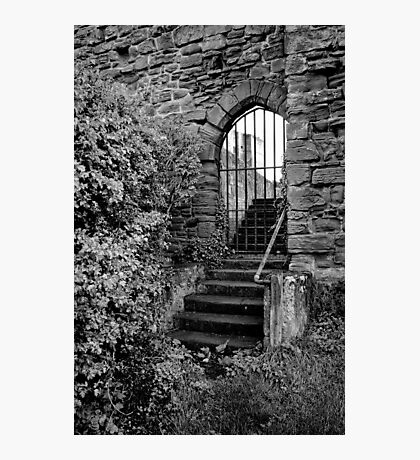 Sneak in the back entrance - Kenilworth - Britain Photographic Print