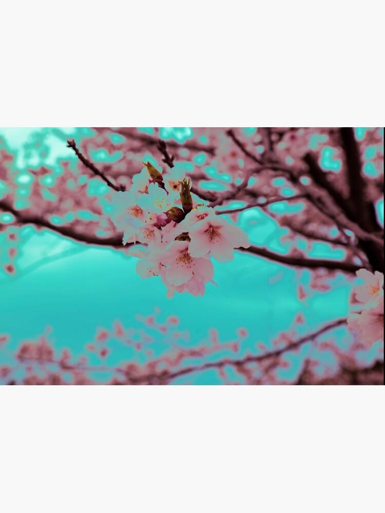 Neon Sakura by JeessReneePhoto