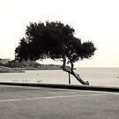 I'm still waiting... by João Figueiredo