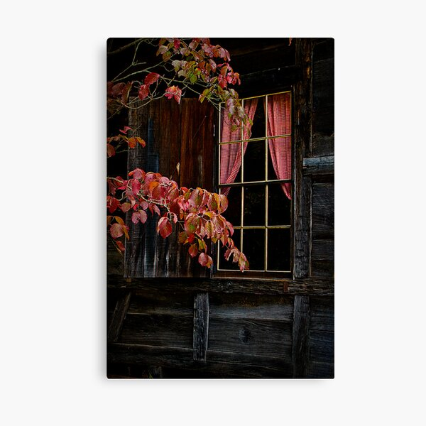 Checkered Past Canvas Print