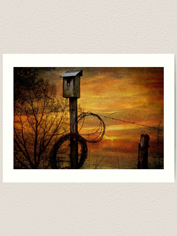 Alternate view of Blue Bird House and Barbed Wire Art Print