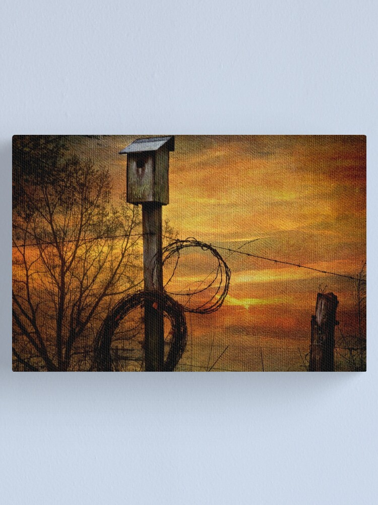 Alternate view of Blue Bird House and Barbed Wire Canvas Print