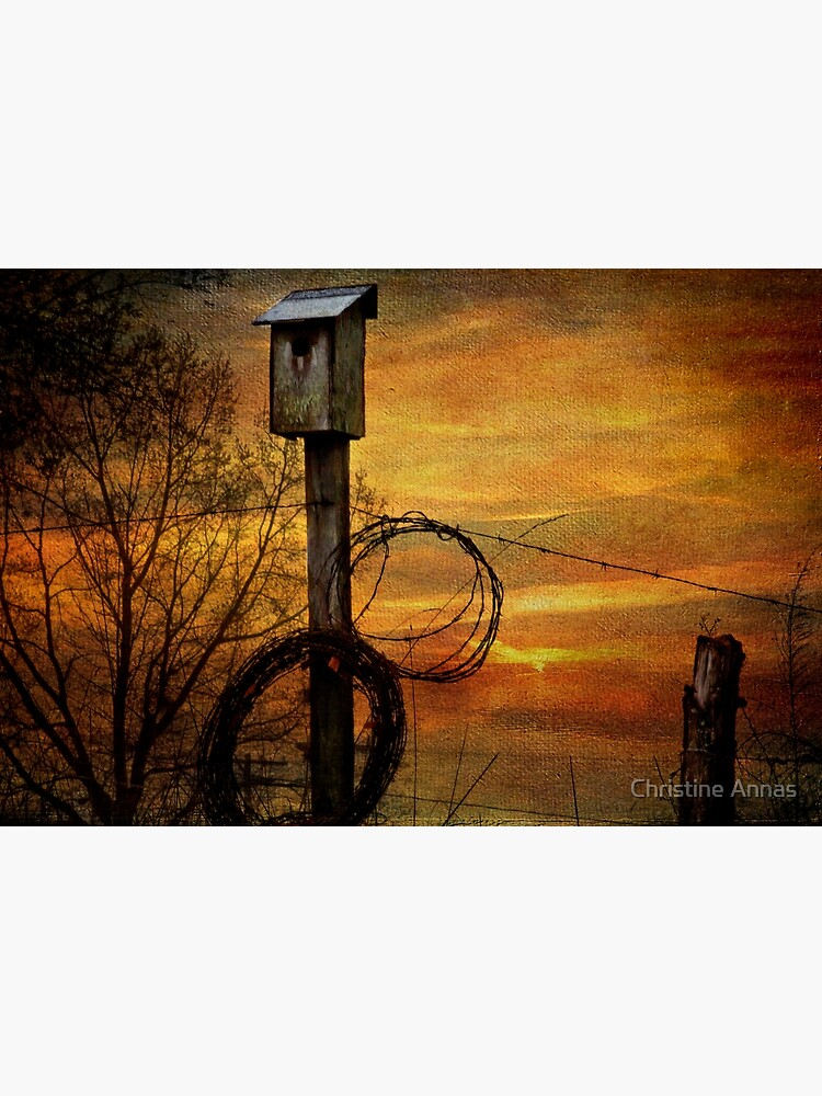 Blue Bird House and Barbed Wire by 2Bricks