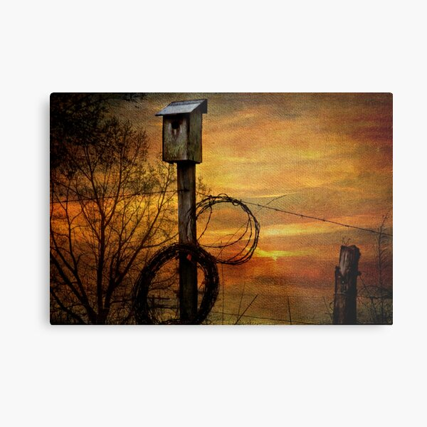 Blue Bird House and Barbed Wire Metal Print