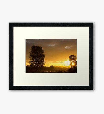 Golden Haze II Framed Print
