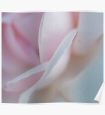 Soft Curves Poster