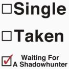 Waiting for a Shadowhunter by jadetiger712