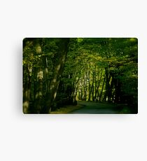 Autumn Wonderland at Galicia. by Doctor Faustus. Canvas Print