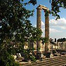 Apollon Temple, Turkey by Dale Lockridge