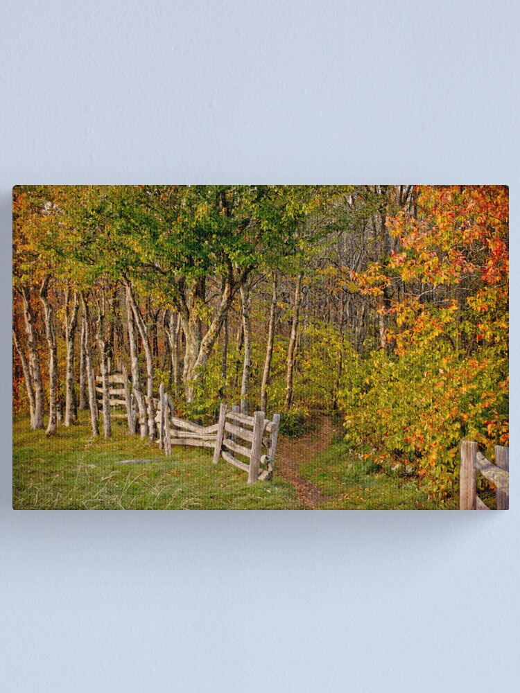 Alternate view of Sunset on an Autumn Wood Canvas Print