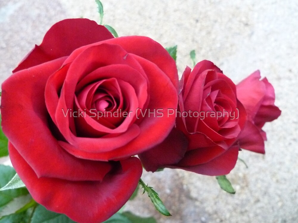 Three Red Roses by Vicki Spindler (VHS Photography)