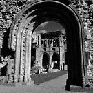 Dryburg Abbey  by Neil Mouat