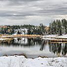 Autumn Snow by Vickie Emms
