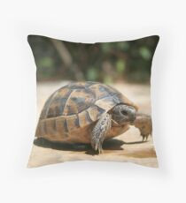 Portrait of a Young Wild Tortoise Throw Pillow