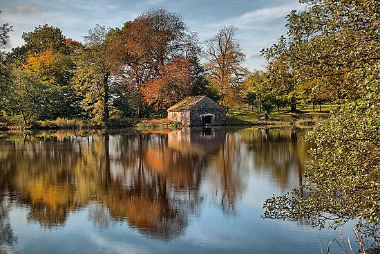 Autumn Reflections by Irene  Burdell