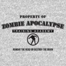 Zombie Apocalypse Training Academy by dgoring