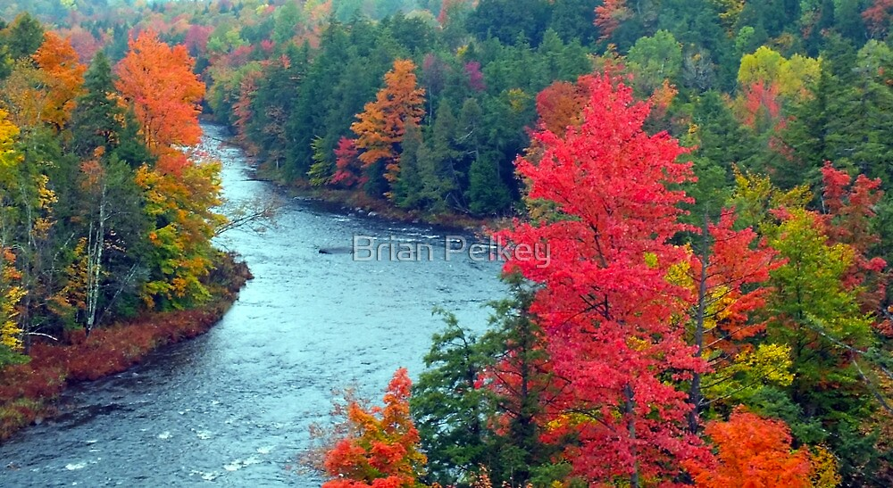 A River Runs Through It by Brian Pelkey