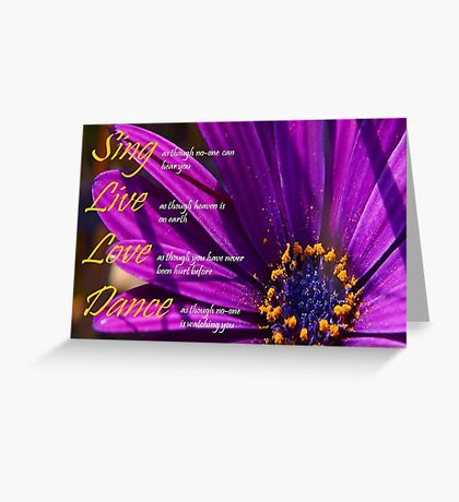 Sing, Live, Love, Dance Quote Purple African Daisy  Greeting Card