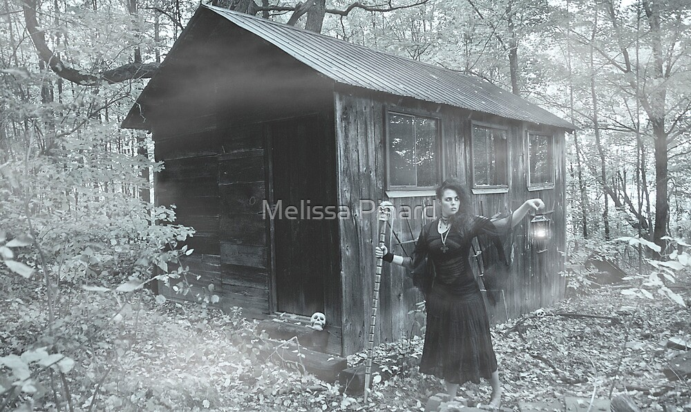 Witch Self Portrait 2 by Melissa Pinard