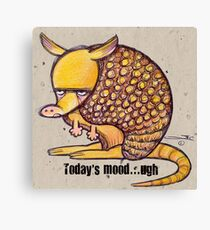 Armadillo Mood Canvas Print