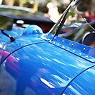 Blue luxury by Renee Eppler