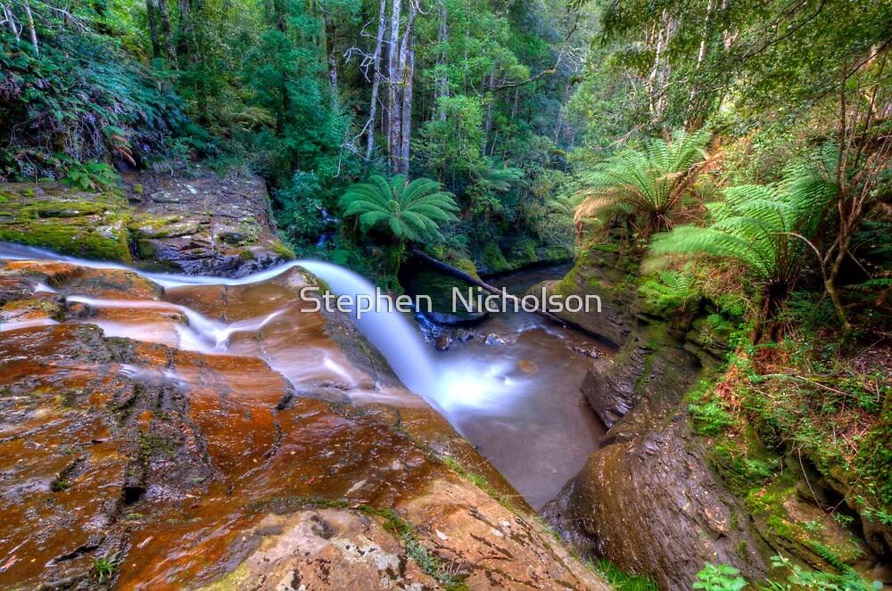 Cascade 3 above Liffy Falls by Stephen  Nicholson