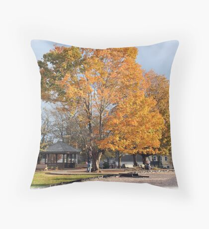 'October in Blowing Rock' Throw Pillow