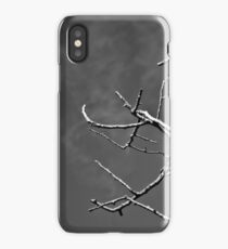 Ireland in Mono: Back Into My Heart iPhone Case/Skin