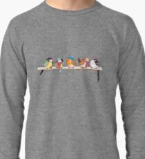 Winter Birdies Lightweight Sweatshirt