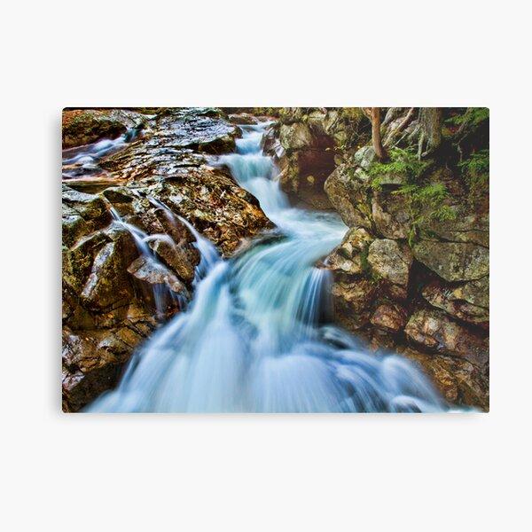 Basin Falls I Metal Print
