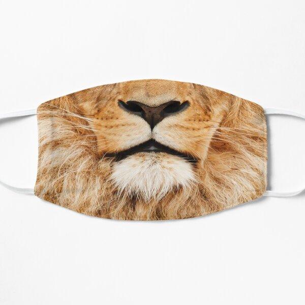 Lion mask Mask