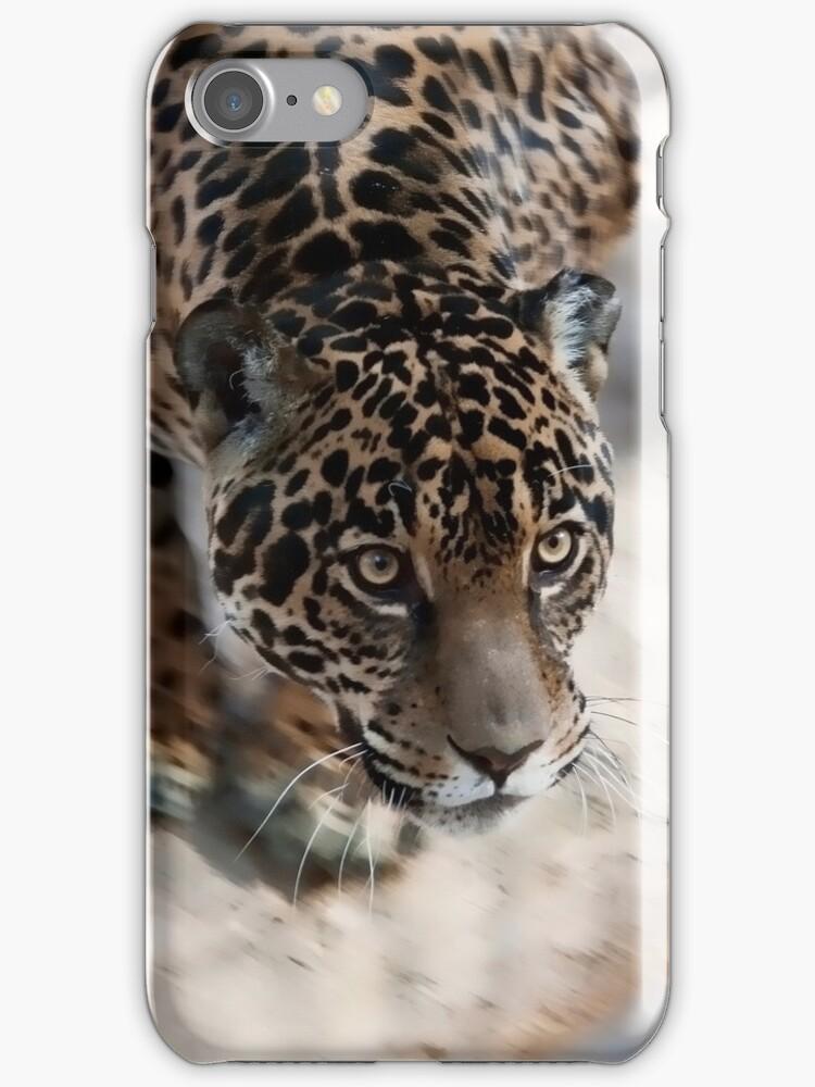 Leopard  by Gouzelka