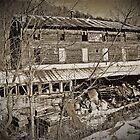 Lost Mill  by Paul Lubaczewski