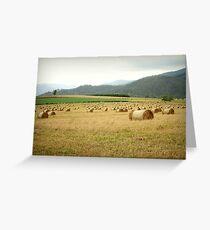 Tableland Farmland Greeting Card